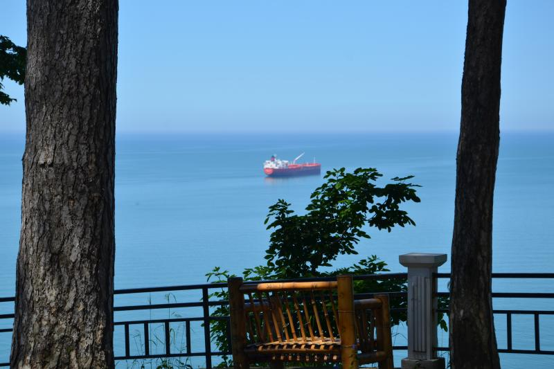 View from Batumi Botanical Garden